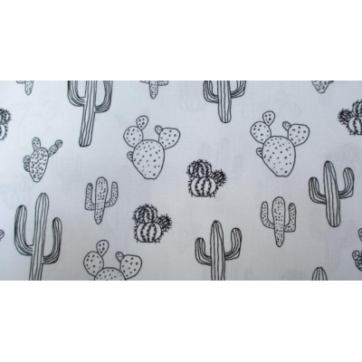 Zwart/wit cactus
